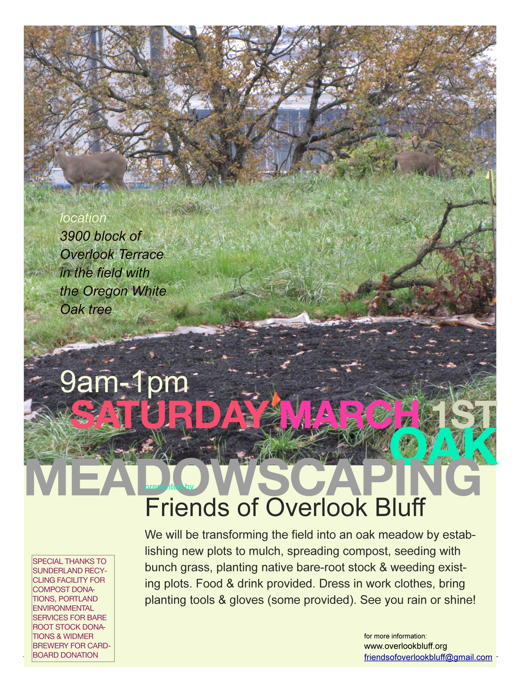 meadowscaping3/1/14